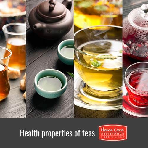 Health Properties of Various Teas that Benefit Seniors in The Grand Strand, SC