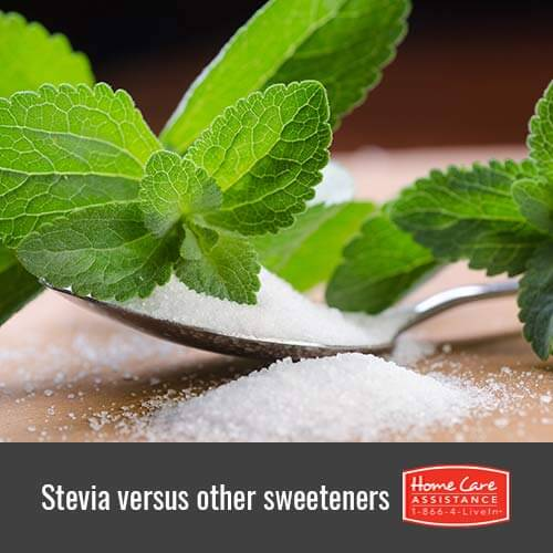Should Your Senior Loved One Switch from Sugar to Stevia in The Grand Strand, SC?