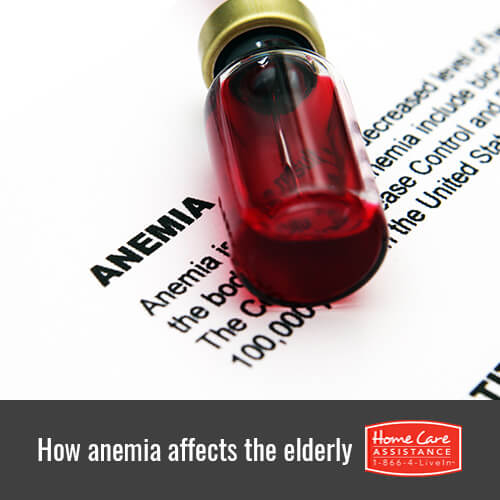 How Does Anemia Affect Seniors in The Grand Strand, SC?