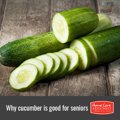 Why the Elderly Should Eat More Cucumber in The Grand Strand, SC