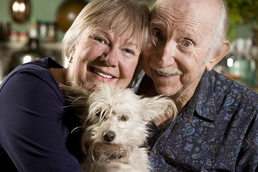 Reasons for Elderly to Adopt Senior Pets in Grand Strand, SC
